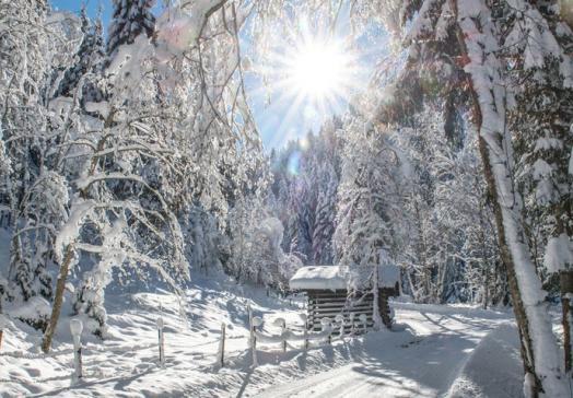 Winterwandern-abseits von Pisten