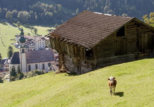 Der Tirolerhof in der Wildschönau