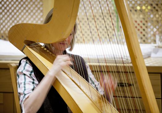 Harp music at the farmer's buffet